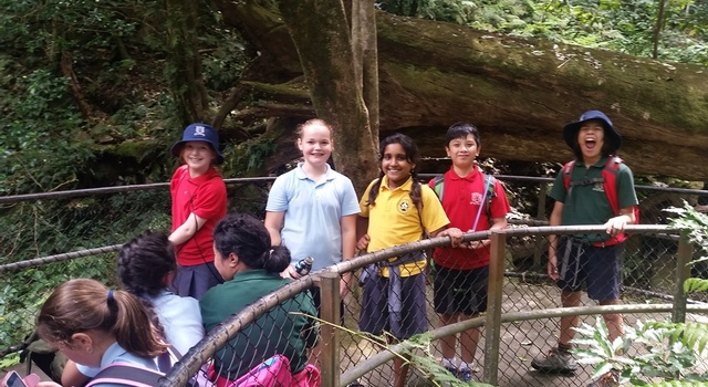 Year 3 Excursion to  11
